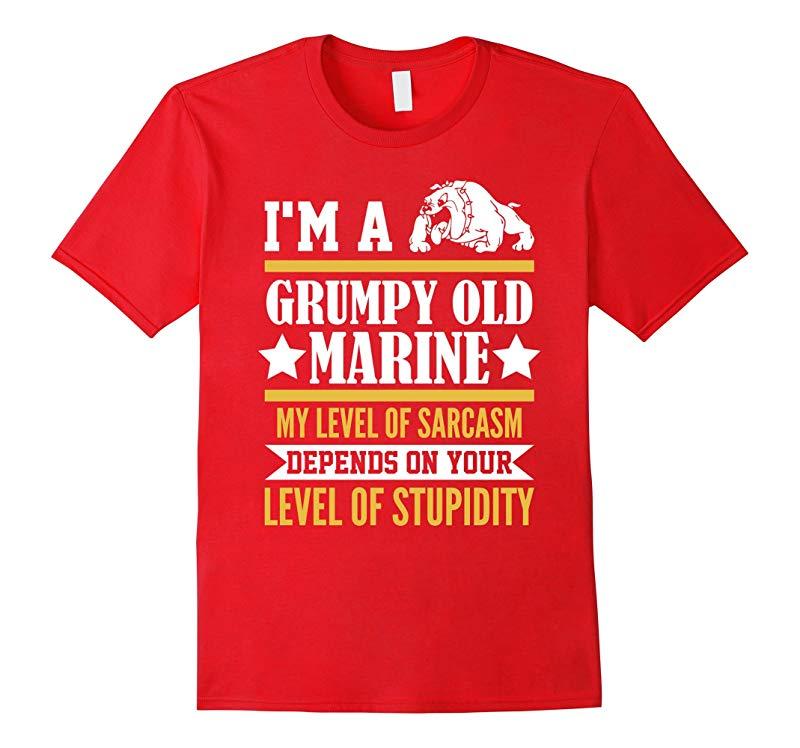 Im A Grumpy Old Marine My Level Of Sarcasm Depends Shirt-TD