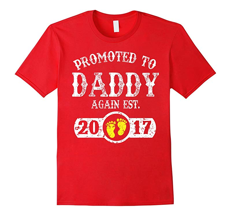 Promoted to Daddy Again Est 2017 T-Shirt-RT